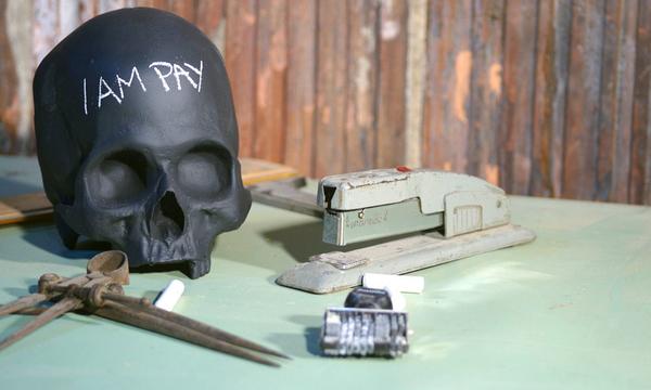 Homo Sapien Chalkboard Skull 2 | BlackBox | iVIP