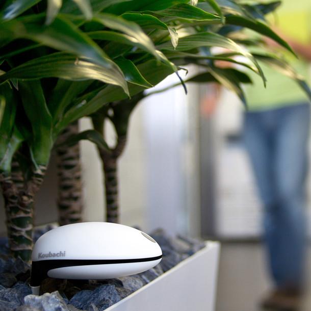Koubachi wi fi plant sensor ivip blackbox - Monitor your indoor plants with the koubashi wi fi sensor ...